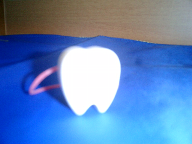 tooth case.png